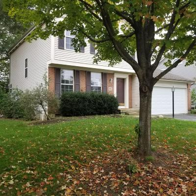 Hilliard Single Family Home For Sale: 4941 Claymill Drive