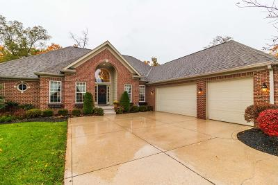 Dublin Single Family Home Contingent Finance And Inspect: 7378 Linden Lane