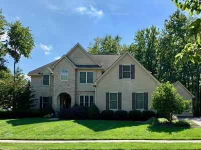 Blacklick Single Family Home For Sale: 7160 Pleasant Colony Circle