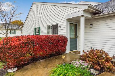 Columbus Condo For Sale: 4656 Shalers Drive #47A