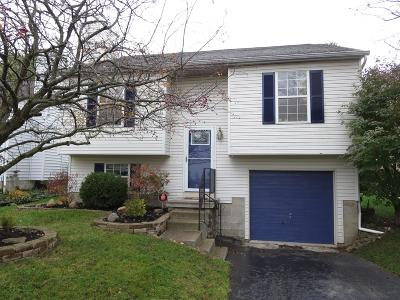 Reynoldsburg Single Family Home Contingent Finance And Inspect: 6807 Erindale Drive