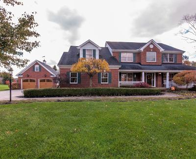 Blacklick Single Family Home For Sale: 6305 Darling Road