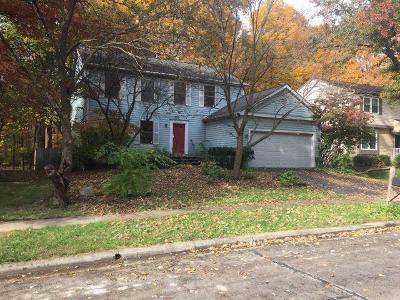 Gahanna Single Family Home For Sale: 797 Lindenhaven Road