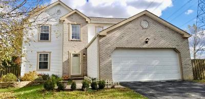 Single Family Home For Sale: 5762 Levi Kramer Boulevard