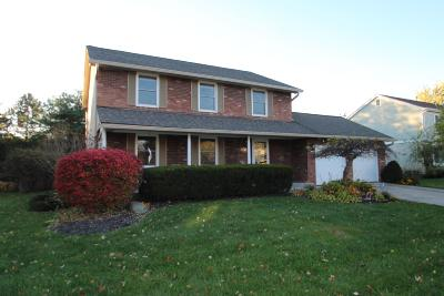 Westerville Single Family Home For Sale: 247 Baker Lake Drive