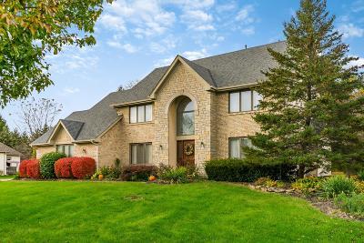Columbus Single Family Home For Sale: 655 Laurel Ridge Drive