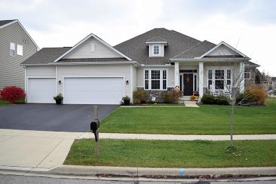 Marysville Single Family Home Contingent Finance And Inspect: 864 Kentucky Circle