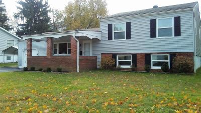 Reynoldsburg Single Family Home For Sale: 6601 Olde Mill