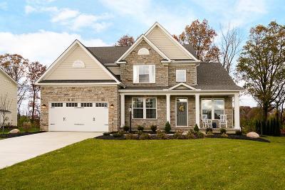 Galena Single Family Home For Sale: 7677 Talavera Drive