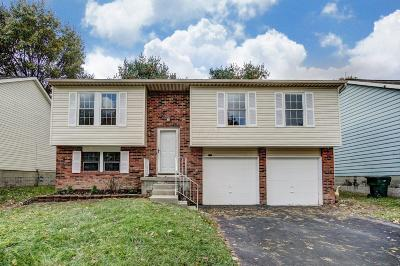 Reynoldsburg Single Family Home For Sale: 3195 Arrowsmith Drive