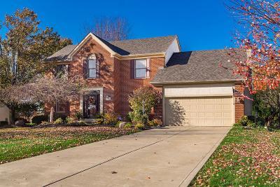 Pickerington Single Family Home For Sale: 9820 Haaf Farm Drive