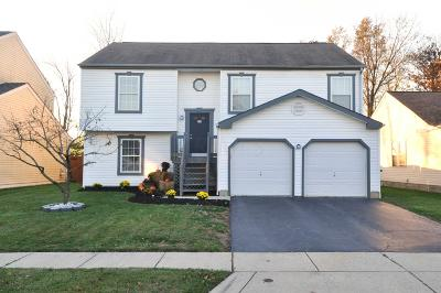 Grove City Single Family Home Contingent Finance And Inspect: 2481 Linbaugh Road
