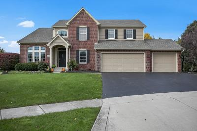 Galena Single Family Home Contingent Finance And Inspect: 2440 Lora Court