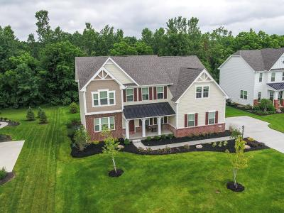 Franklin County, Delaware County, Fairfield County, Hocking County, Licking County, Madison County, Morrow County, Perry County, Pickaway County, Union County Single Family Home For Sale: 4179 Mainsail Drive