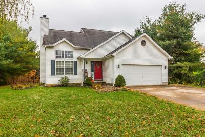 Canal Winchester Single Family Home For Sale: 300 Pfeifer Drive