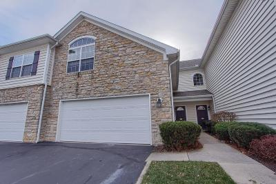 Dublin Condo Contingent Finance And Inspect: 5153 Vinings Bend #B