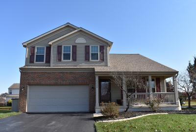 Grove City Single Family Home Contingent Finance And Inspect: 4606 Edgarton Drive