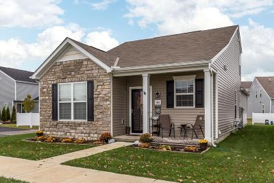 Dublin OH Single Family Home Contingent Finance And Inspect: $229,900