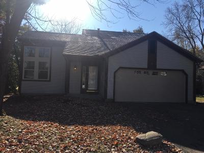 Columbus Single Family Home For Sale: 3737 Carnforth Drive