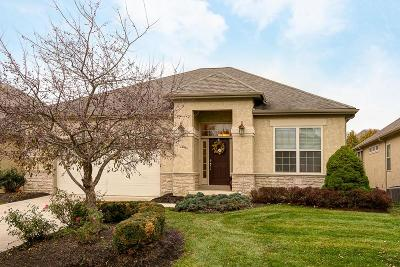 Columbus Single Family Home Contingent Finance And Inspect: 1393 Denbigh Drive