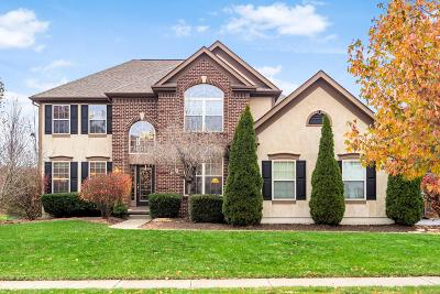 Franklin County, Delaware County, Fairfield County, Hocking County, Licking County, Madison County, Morrow County, Perry County, Pickaway County, Union County Single Family Home For Sale: 5383 Port Haven Drive