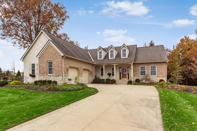 Westerville Single Family Home For Sale: 6806 Whitetail Lane