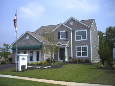 Blacklick Single Family Home Contingent Finance And Inspect: 7979 Chapel Stone Road
