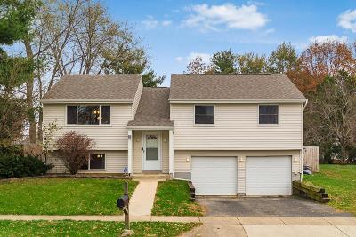 Reynoldsburg OH Single Family Home For Sale: $162,900
