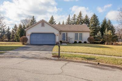 Single Family Home For Sale: 4771 Big Walnutview Court
