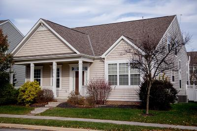 Westerville Single Family Home For Sale: 672 Stonefield Drive