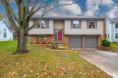 Columbus Single Family Home For Sale: 1652 Weather Stone Lane