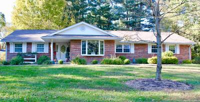 Granville Single Family Home For Sale: 248 Pinetree Drive