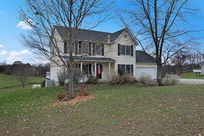 Licking County Single Family Home For Sale: 3171 Dayton Road NE