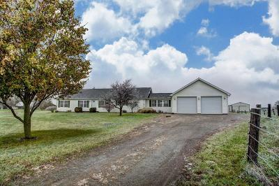 Union County Single Family Home For Sale: 24190 State Route 47