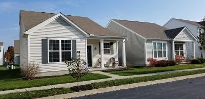Grove City Single Family Home Contingent Finance And Inspect: 2532 Snowtip Lane