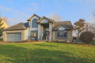 Pickerington Single Family Home Contingent Finance And Inspect: 12638 Oakmere Drive
