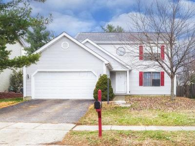 Westerville Single Family Home For Sale: 1080 Welwyn Drive