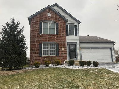 Single Family Home For Sale: 607 Carson Farms Boulevard