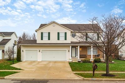 Grove City Single Family Home Contingent Finance And Inspect: 1630 Sapphire Drive