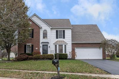 Hilliard Single Family Home For Sale: 4062 Treebrook Drive