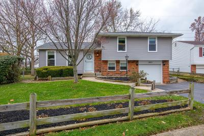 Groveport Single Family Home Contingent Finance And Inspect: 3813 Big Walnut Drive