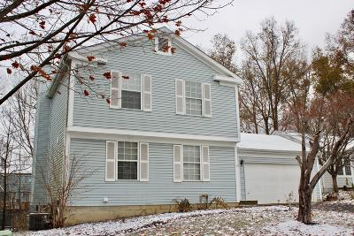 Gahanna Single Family Home For Sale: 3876 Deer Knoll Drive