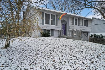 Hilliard Single Family Home Contingent Finance And Inspect: 5223 Grandon Drive