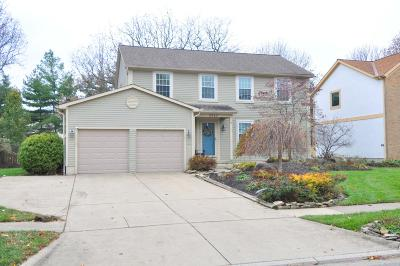 Grove City Single Family Home For Sale: 3527 Marshrun Drive
