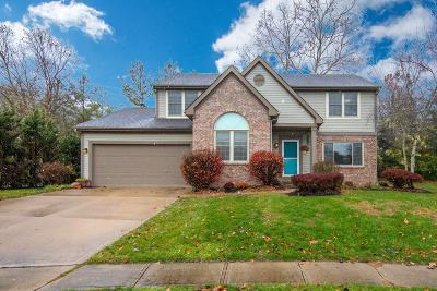 Columbus Single Family Home For Sale: 6482 Brookbend Drive