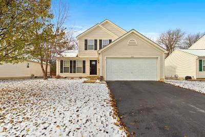Single Family Home For Sale: 263 Stonhope Drive