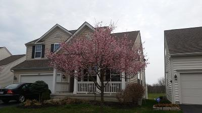 Grove City Single Family Home For Sale: 1150 Carnoustie Circle