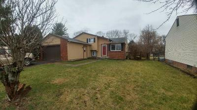 Groveport Single Family Home Contingent Finance And Inspect: 3729 Big Walnut Drive