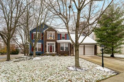 Powell Single Family Home For Sale: 510 Delaneys Circle