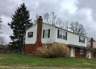 Reynoldsburg Single Family Home For Sale: 6784 Laird Avenue